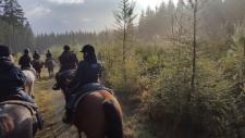 western trail ranch vielsalm paardrijden Ardennen