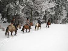 Paardrijden Ardennen Western Trail Ranch