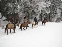 winter paardrijden december 2010