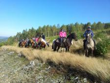 paardrijvakantie Ardennen